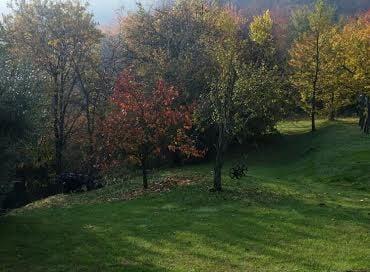 foto-news-autunno