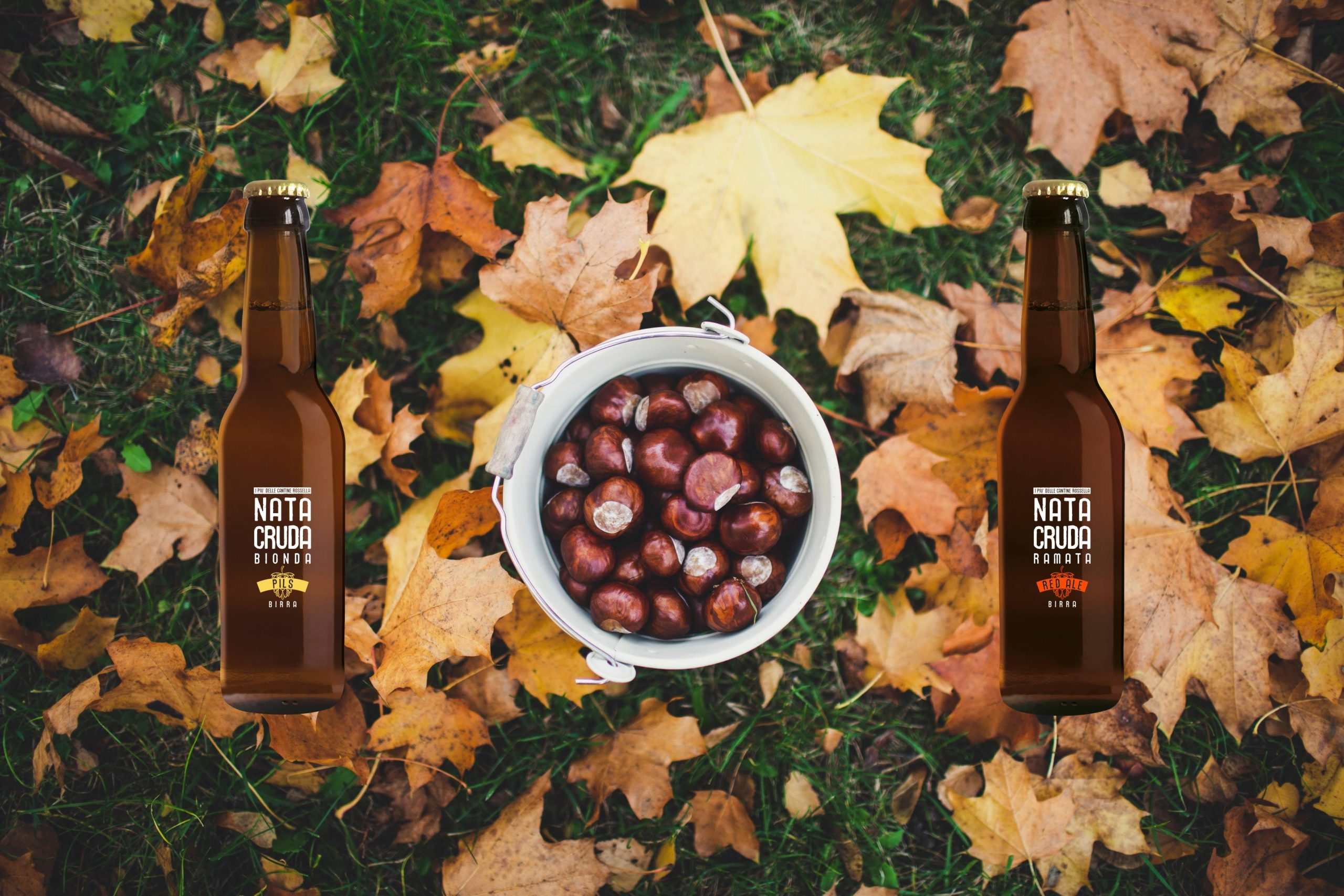 Birra e castagne: un menù autunnale